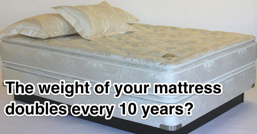 Rumor Holds That A Typical Mattress Will Double In Weight After 10 Years Due To The Aculation Of Debris And Dust Mite Droppings