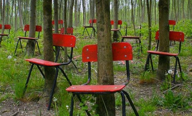 An Intriguing Image Of Chairs With Trees Growing Through Them Does Not Stem From Ill Fated Wedding In Poland 1939 Halted By The Onset World War II