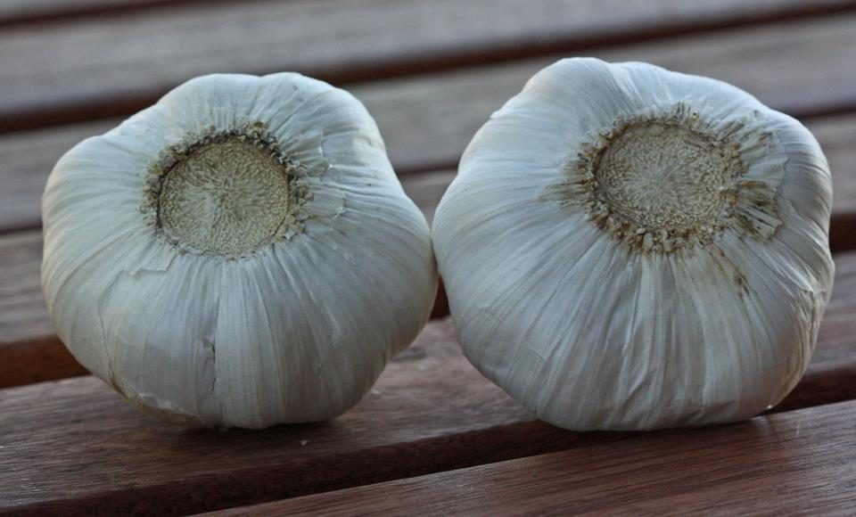 garlic from china