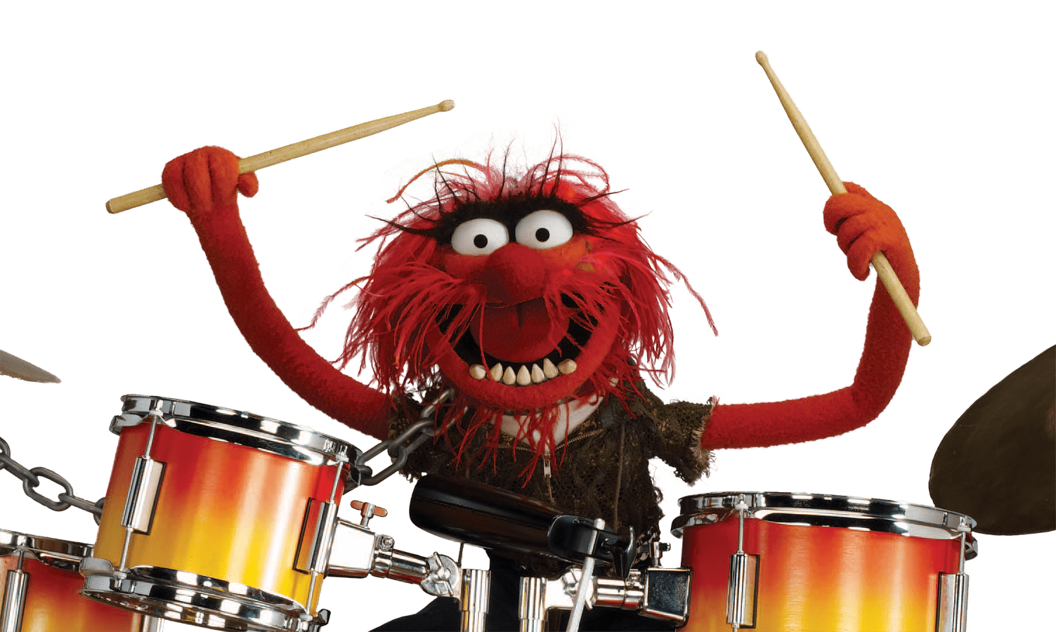 Fact check rock legend animal is not dead - Animal muppet images ...