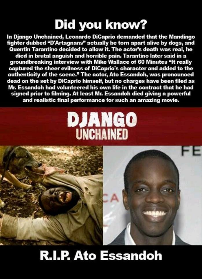 "django unchained the reality of Is ""django unchained"" historically accurate and does it matter july 7, 2015 when django unchained (2012) was jr points out that real-life slaves rode."