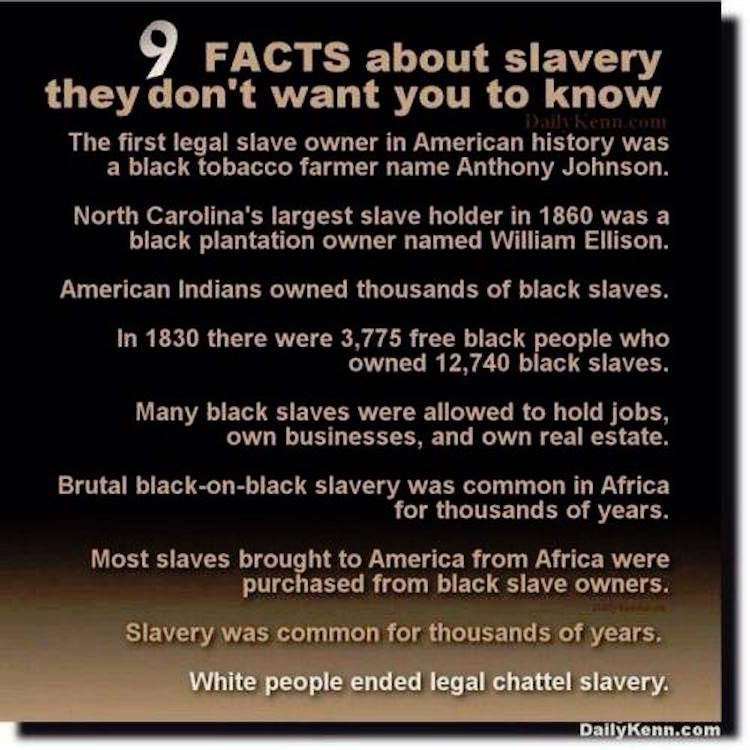 Fact check 9 facts about slavery they don 39 t want you to know for Good facts about america