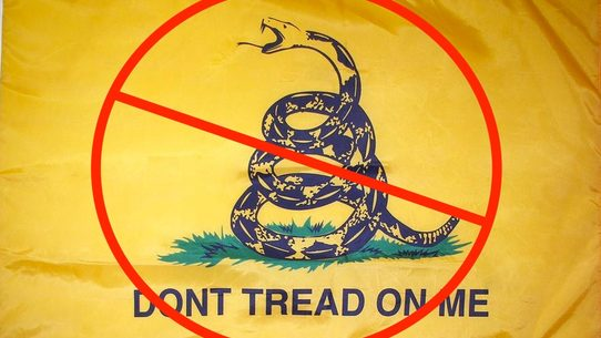 Fact Check President Obama Is Banning The Dont Tread On Me Flag