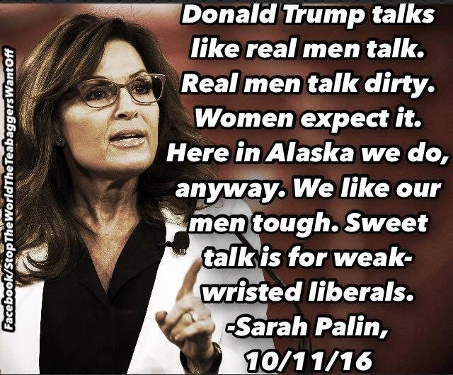 palin quote