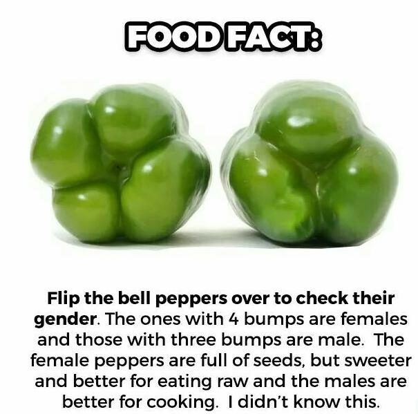 FACT CHECK: How to Tell a Pepper\'s Gender?