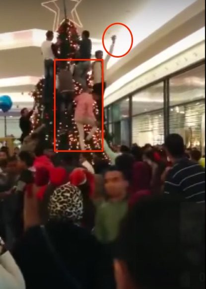 Muslims_See_A_Christmas_Tree_Being_Setup_At_A_Mall__Then_Start_Attacking_It___VIDEO__⋆_Freedom_Daily