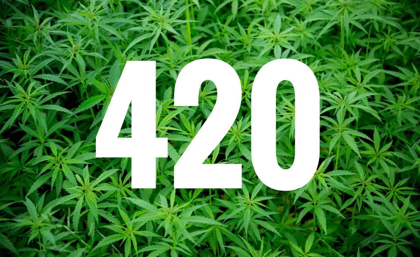 The story of how the code '420' entered drug parlance as a term signifying  the time to light up a joint.