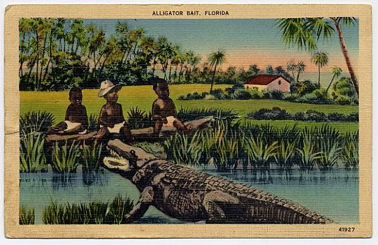 Were Black Children Used As Alligator Bait In The American