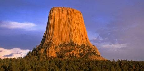 Devils Tower Wy >> Fact Check Was A Giant System Of Roots Discovered Below The