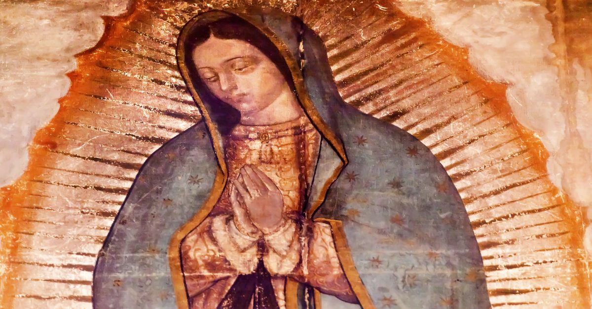 chapter 9 the virgin of guadalupe La virgen de guadalupe (the virgin of guadalupe) unlike god and the golden carp, the virgin of guadalupe offers up forgiveness the virgin serves as a connection between the cultures that pull at antonio, even though it's a traditional catholic s.