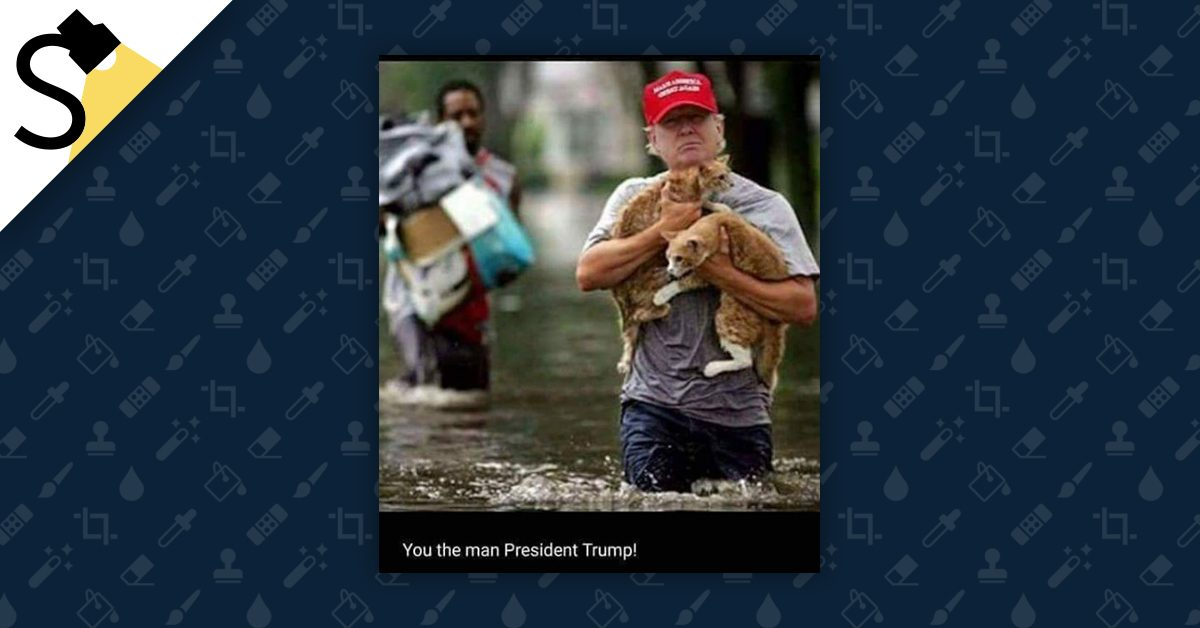 FACT CHECK: Did President Trump Save Two Cats After Hurricane Harvey?