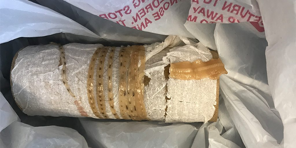 FACT CHECK: Sushi Fanatic Pulls 5-Foot-Long Tapeworm Out of His Body
