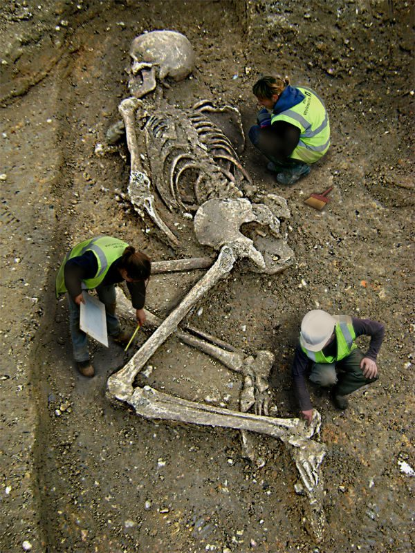 Fact Check Is This Goliath Skeleton Real