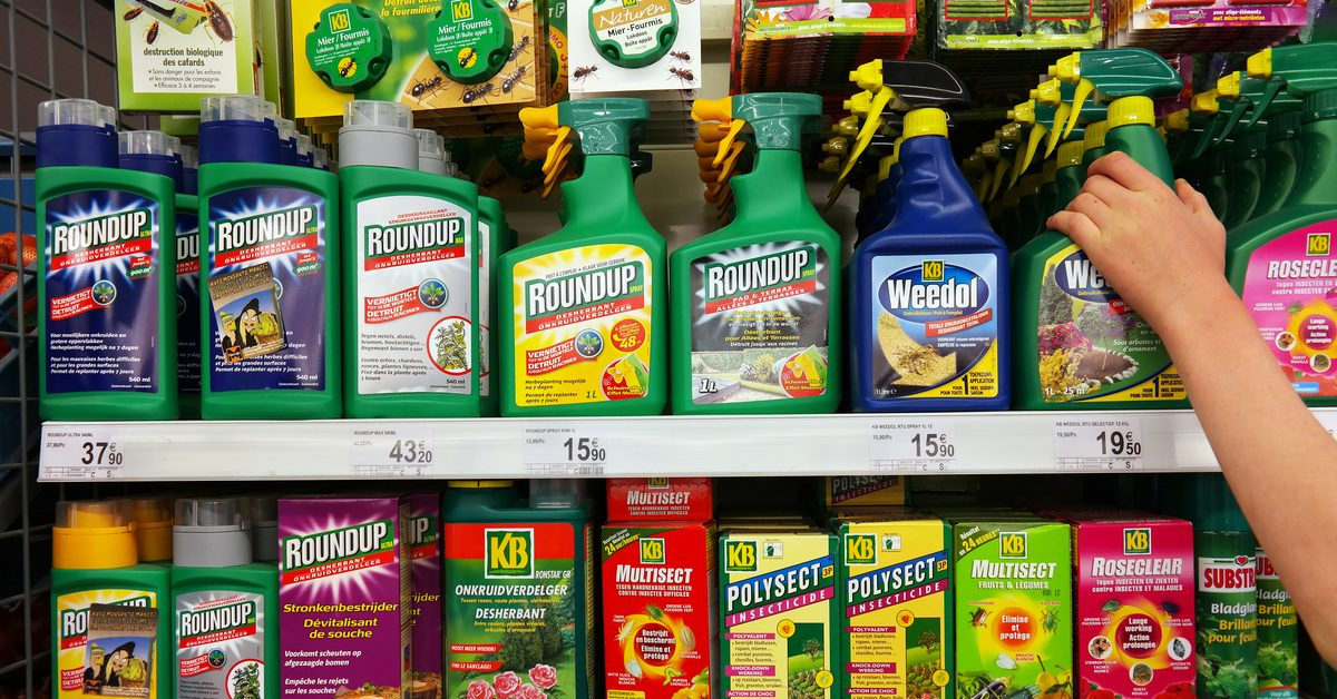 Cancer, Juries, and Scientific Certainty: The Monsanto Roundup Ruling Explained