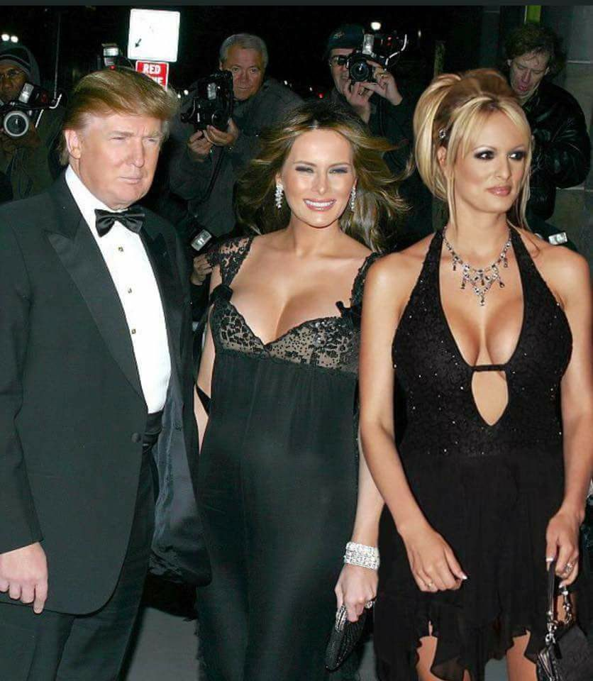Image result for stormy daniel & trump