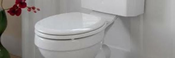 Claim A Woman Stuck To Toilet Seat Provides Physician With An Opportunity For The Perfect Bon Mot