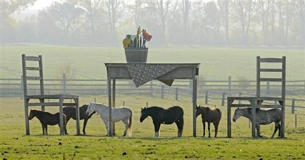 Click to enlarge : horse shelter table and chairs - Cheerinfomania.Com